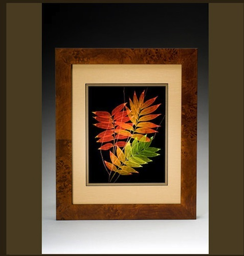 Two Orange and Green Leaf
