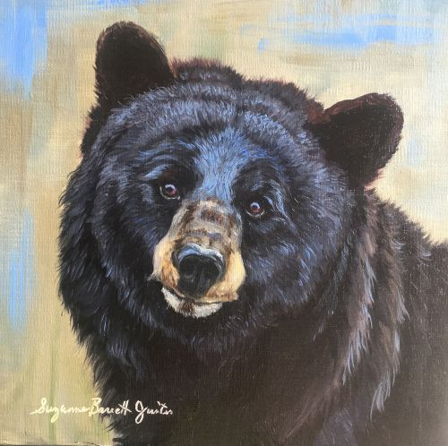 Black Bear Encounter 14.5 x 14.5 Framed