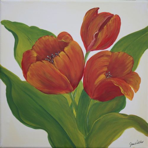 3 Tulips Canvas