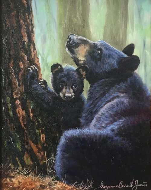 Mother and Child (Black Bear) 13 x 11 Framed