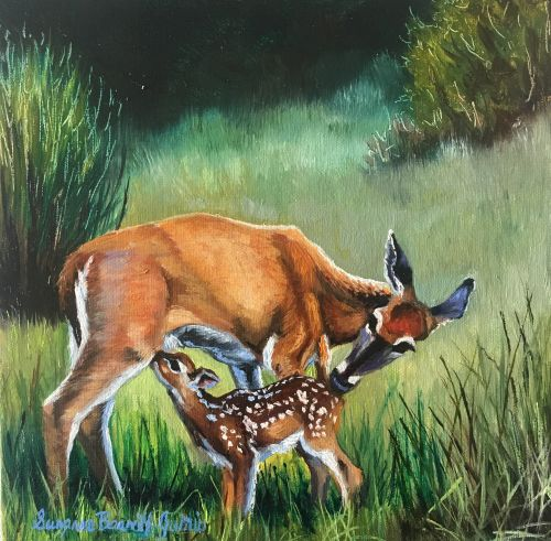 Mother and Child (Whitetail) 14 x 14
