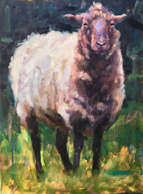 Sheep Sketch 22.5 x 19 Framed