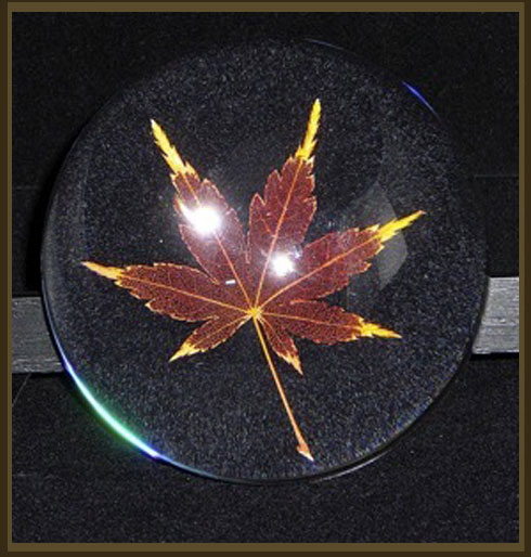 Red Leaf in Glass