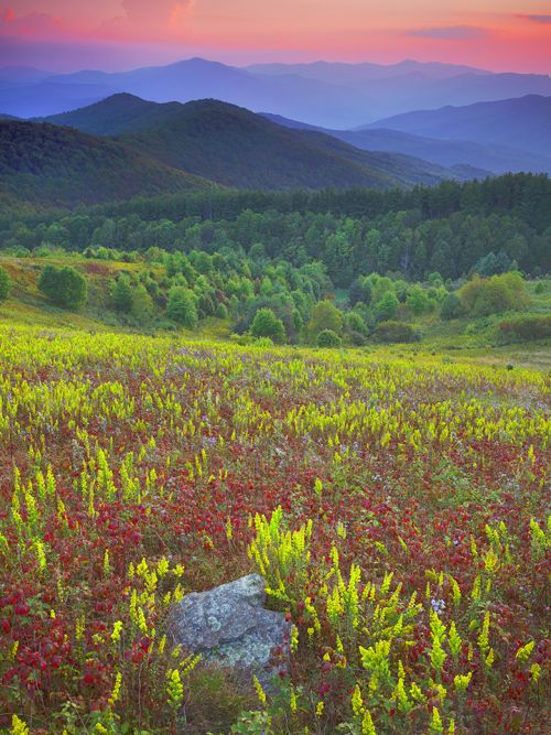 Max Patch Color Melody 47 x 37 Framed